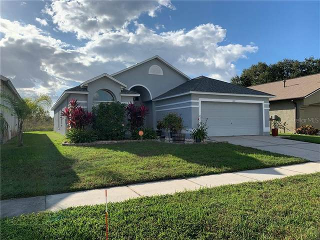 1641 Maximilian Drive, Wesley Chapel, FL 33543 (MLS #T3277917) :: Bustamante Real Estate