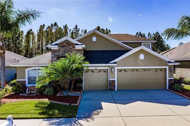 31632 Holcomb Pass, Wesley Chapel, FL 33543 (MLS #T3277928) :: Griffin Group