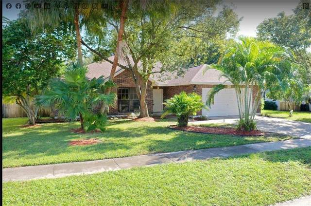 7432 Mint Julep Drive, Riverview, FL 33578 (MLS #T3277948) :: The Duncan Duo Team