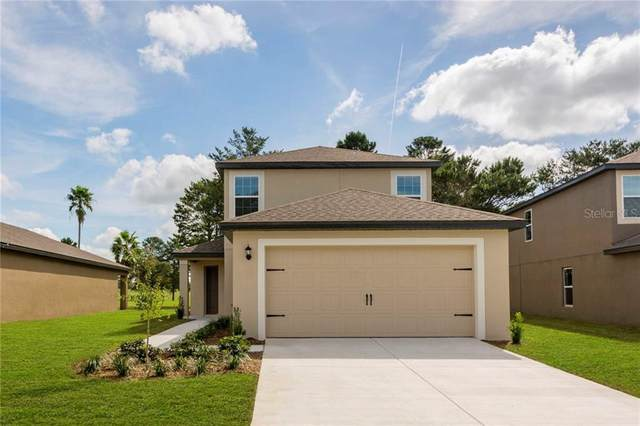 8577 Indian Laurel Lane, Brooksville, FL 34613 (MLS #T3277958) :: Bridge Realty Group