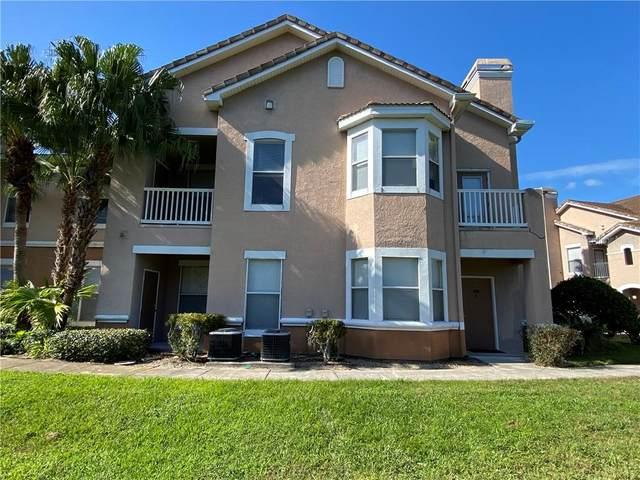 10431 Villa View Circle, Tampa, FL 33647 (MLS #T3277991) :: Team Bohannon Keller Williams, Tampa Properties