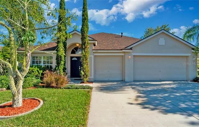 1520 Stetson Drive, Wesley Chapel, FL 33543 (MLS #T3278000) :: Premier Home Experts