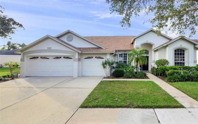 12305 Seabrook Drive, Tampa, FL 33626 (MLS #T3278016) :: Premier Home Experts