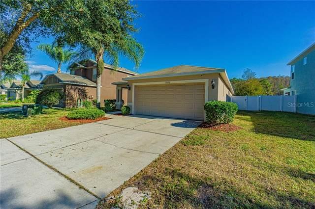 12632 White Bluff Road, Hudson, FL 34669 (MLS #T3278024) :: Griffin Group