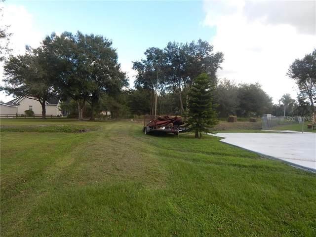 2531 Dad Weldon Road, Dover, FL 33527 (MLS #T3278058) :: GO Realty