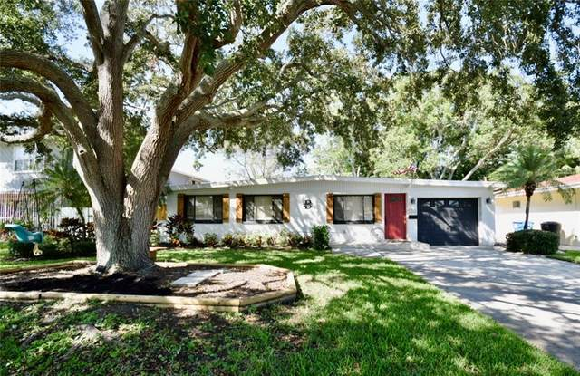 4200 Carson Street NE, St Petersburg, FL 33703 (MLS #T3278065) :: Carmena and Associates Realty Group