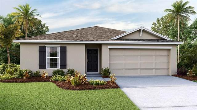 8660 SW 49TH Circle, Ocala, FL 34476 (MLS #T3278115) :: Pepine Realty