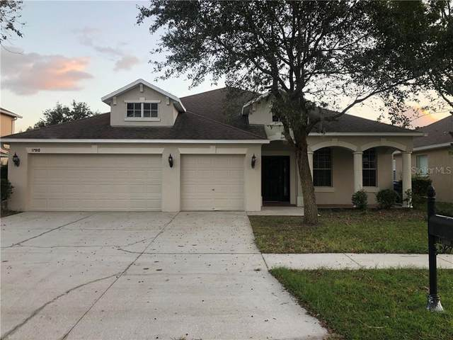 17910 Souter Lane, Land O Lakes, FL 34638 (MLS #T3278168) :: Gate Arty & the Group - Keller Williams Realty Smart