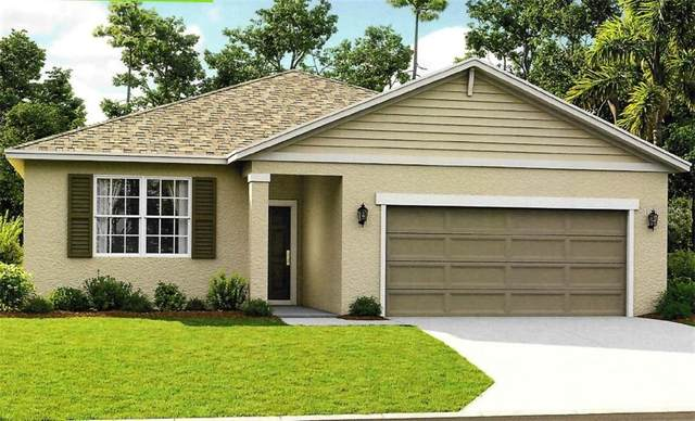 32648 Coldwater Creek Lane, Wesley Chapel, FL 33545 (MLS #T3278175) :: GO Realty