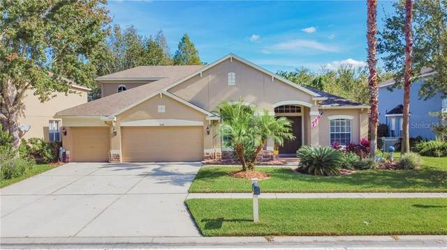 7444 Night Heron Drive, Land O Lakes, FL 34637 (MLS #T3278182) :: Griffin Group