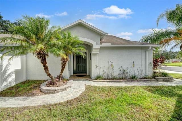 4616 Mcbrine Court, Land O Lakes, FL 34639 (MLS #T3278186) :: Team Bohannon Keller Williams, Tampa Properties