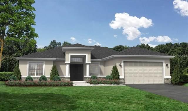 11404 Poorwill Avenue, Brooksville, FL 34614 (MLS #T3278223) :: Premier Home Experts