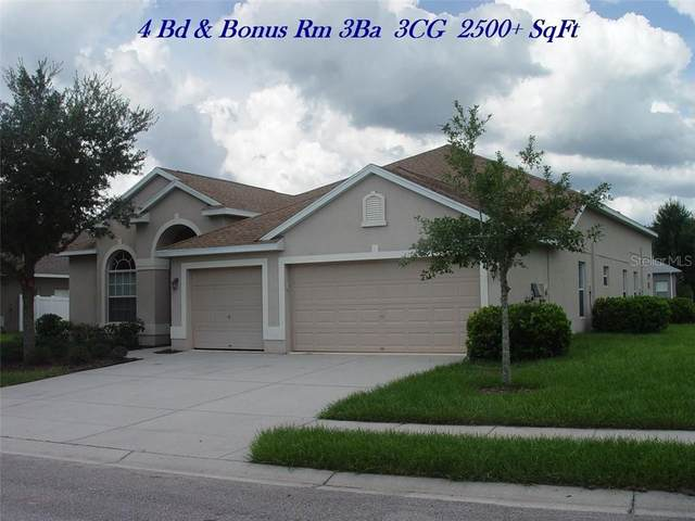 9002 Sandusky Lane, New Port Richey, FL 34654 (MLS #T3278301) :: Griffin Group