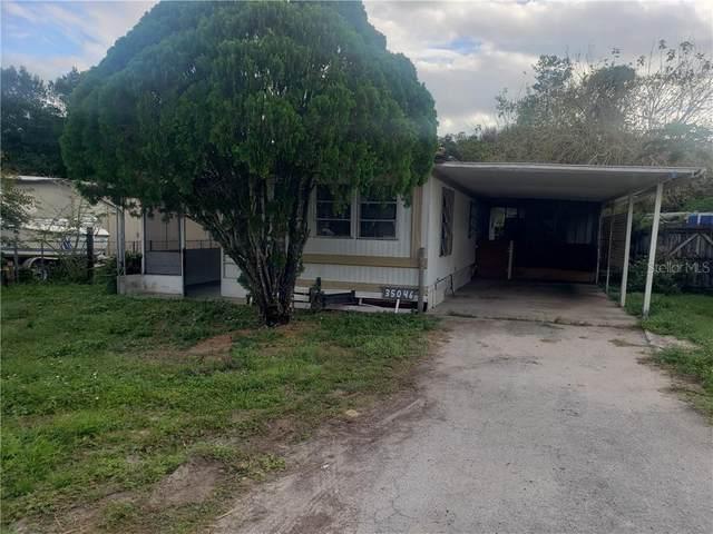 35046 Sateen Drive, Zephyrhills, FL 33541 (MLS #T3278303) :: Griffin Group
