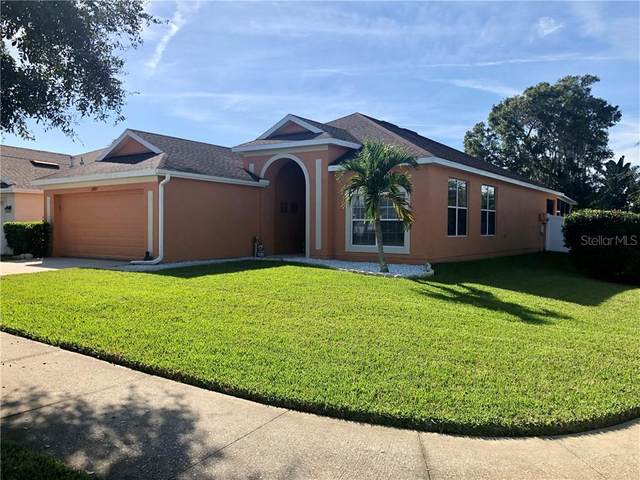 12803 Avelar Creek Drive, Riverview, FL 33578 (MLS #T3278334) :: Rabell Realty Group