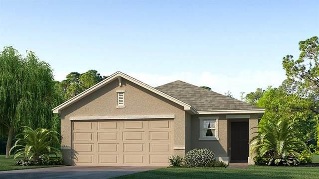 648 Olive Conch Street, Ruskin, FL 33570 (MLS #T3278342) :: Team Bohannon Keller Williams, Tampa Properties