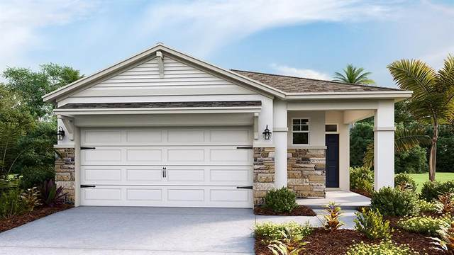 5250 Sunshine Drive, Wildwood, FL 34785 (MLS #T3278349) :: Griffin Group