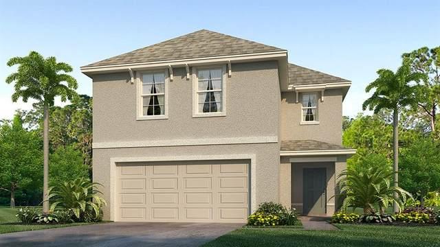 661 Olive Conch Street, Ruskin, FL 33570 (MLS #T3278353) :: Team Bohannon Keller Williams, Tampa Properties