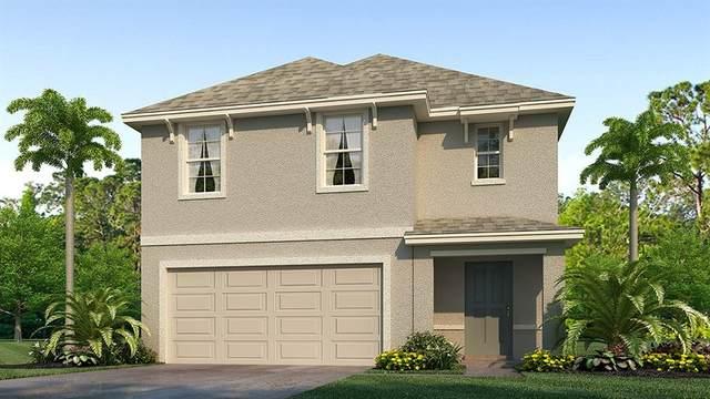 636 Olive Conch Street, Ruskin, FL 33570 (MLS #T3278380) :: Team Bohannon Keller Williams, Tampa Properties