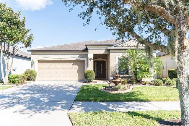 11514 Scarlet Ibis Place, Riverview, FL 33569 (MLS #T3278396) :: Griffin Group