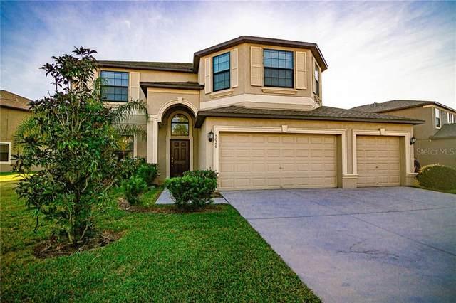 5026 Ivory Stone Drive, Wimauma, FL 33598 (MLS #T3278401) :: Everlane Realty