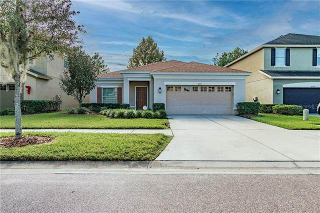 8711 Turnstone Shore Lane, Riverview, FL 33578 (MLS #T3278417) :: Key Classic Realty