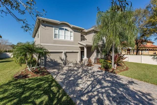 12908 Darby Ridge Drive, Tampa, FL 33624 (MLS #T3278467) :: Alpha Equity Team