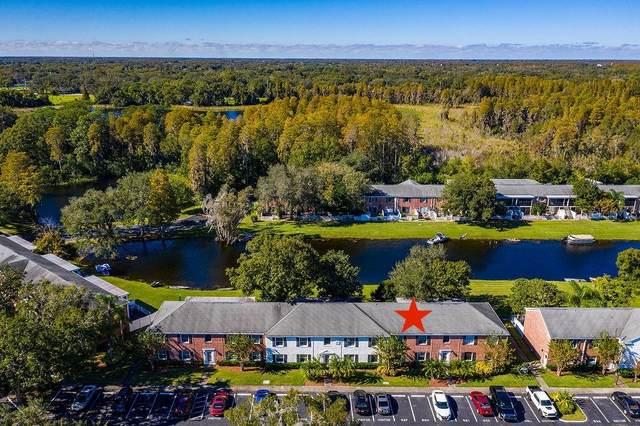 13692 Orange Sunset Drive #202, Tampa, FL 33618 (MLS #T3278647) :: Florida Real Estate Sellers at Keller Williams Realty