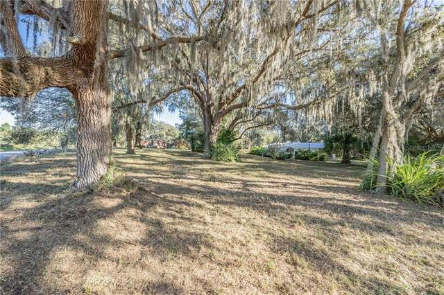 Abbey Drive, Dade City, FL 33525 (MLS #T3278699) :: Griffin Group