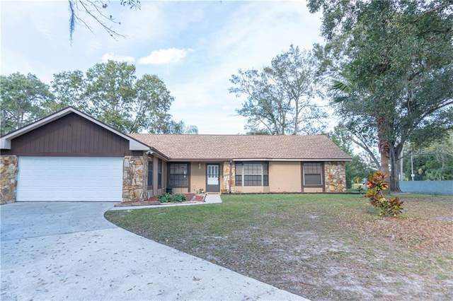 10006 Albyar Avenue, Riverview, FL 33578 (MLS #T3278788) :: EXIT King Realty