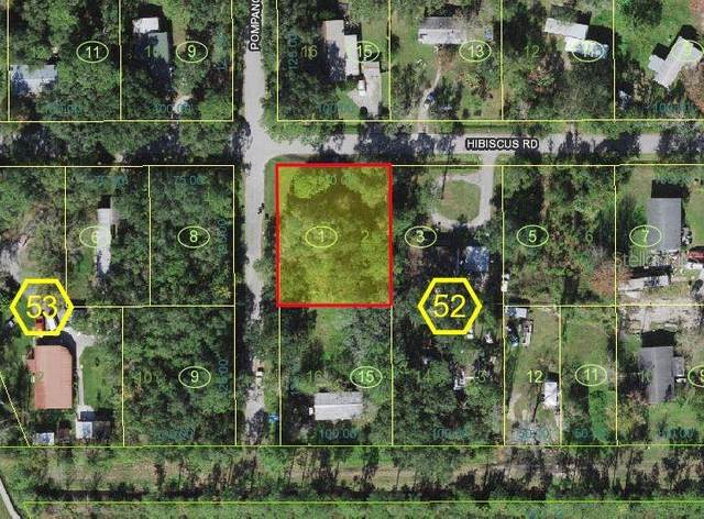 Kissimmee, FL 34746 :: EXIT King Realty