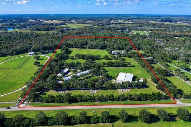 Odessa, FL 33556 :: Positive Edge Real Estate
