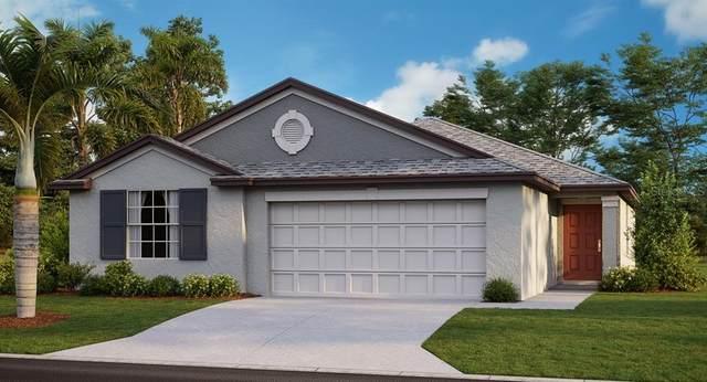 2893 Lytton Hall Drive, Zephyrhills, FL 33540 (MLS #T3278907) :: The Heidi Schrock Team