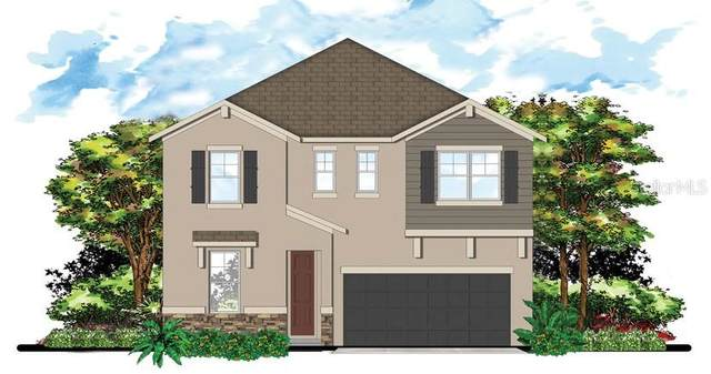 2320 W Gray Street, Tampa, FL 33609 (MLS #T3278971) :: Griffin Group