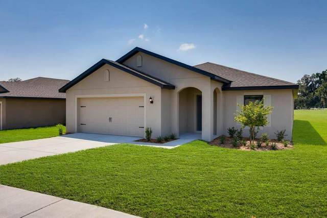1973 Amber Sweet Circle, Dundee, FL 33838 (MLS #T3278976) :: GO Realty