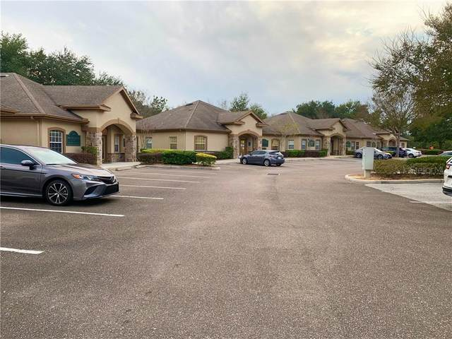 24642 State Road 54, Lutz, FL 33559 (MLS #T3278996) :: The Heidi Schrock Team