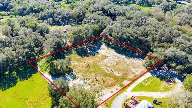 Zephyrhills, FL 33541 :: Bustamante Real Estate