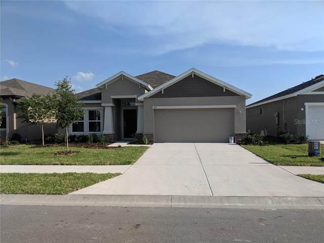 355 Old Windsor Way, Spring Hill, FL 34609 (MLS #T3279006) :: The Heidi Schrock Team