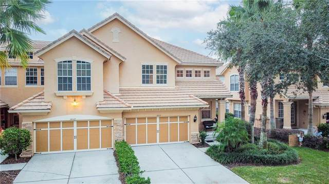 14525 Mirabelle Vista Circle, Tampa, FL 33626 (MLS #T3279024) :: Griffin Group