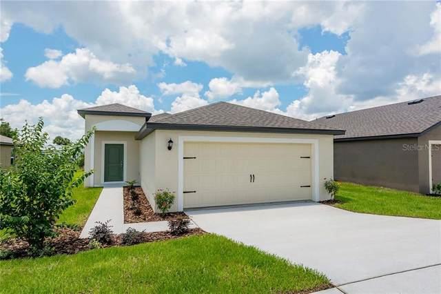 449 Kensington View Drive, Winter Haven, FL 33880 (MLS #T3279204) :: CGY Realty