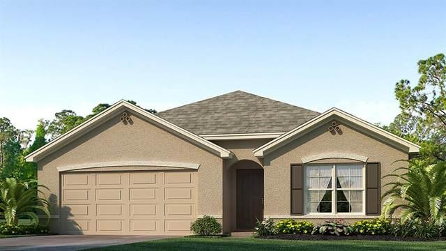 1103 Golden Shiner Avenue, Ruskin, FL 33570 (MLS #T3279221) :: Sarasota Property Group at NextHome Excellence