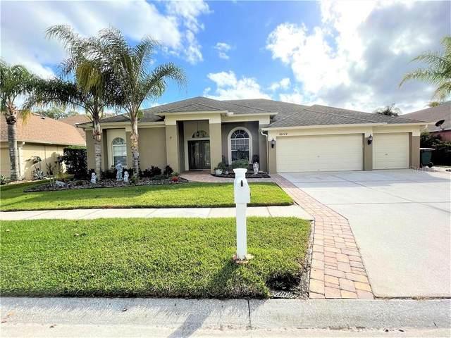 26222 Sword Dancer Drive, Wesley Chapel, FL 33544 (MLS #T3279234) :: Sarasota Property Group at NextHome Excellence
