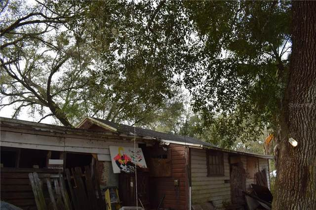34964 Talisman Street, Dade City, FL 33523 (MLS #T3280040) :: Positive Edge Real Estate