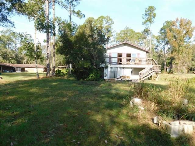 505 W Hillsborough Avenue, Florahome, FL 32140 (MLS #T3280124) :: Your Florida House Team