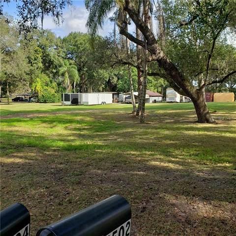 5509 Peach Avenue, Seffner, FL 33584 (MLS #T3280483) :: Armel Real Estate