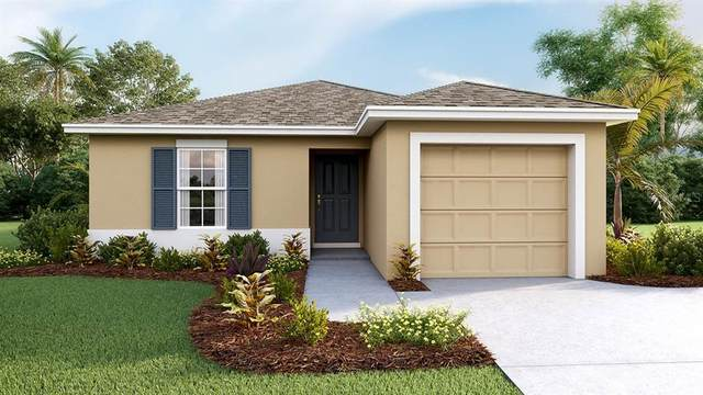 17030 Blister Wing Drive, Wimauma, FL 33598 (MLS #T3280544) :: Griffin Group