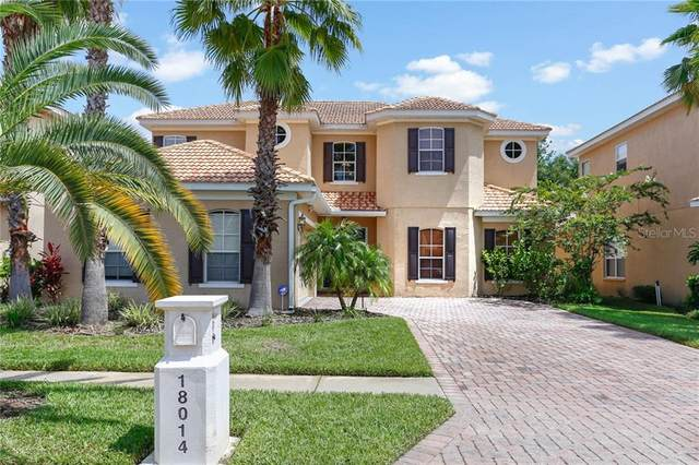 18014 Lanai Isle Drive, Tampa, FL 33647 (MLS #T3280895) :: Rabell Realty Group