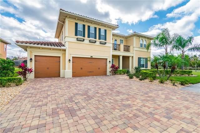 28610 Corbara Place, Wesley Chapel, FL 33543 (MLS #T3281035) :: Team Bohannon Keller Williams, Tampa Properties