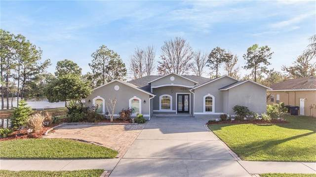 21604 Silver Bay Place, Land O Lakes, FL 34637 (MLS #T3281059) :: Kelli and Audrey at RE/MAX Tropical Sands