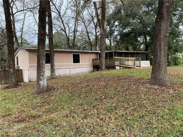 3241 Tulip Street, Dade City, FL 33523 (MLS #T3281075) :: Realty One Group Skyline / The Rose Team